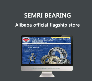 semri bearing background